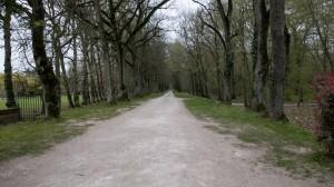 _LEP1131 - La Grande Avenue qui mène au chateau...