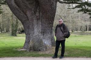 _LEP1138 - Un autre gros arbre, pas le gars!