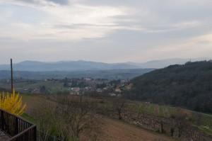 _LEP1363 - Quelle vue superbe de chez l'éleveur de Jaina, Virginie et Oliver. Encore merci de nous avoir reçus ainsi.